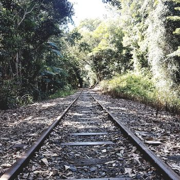 Reiseziele Australien - Cairns - Kuranda Rainforest Railway