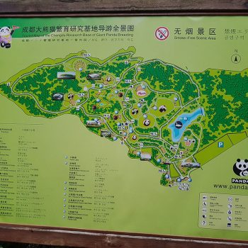 Reiseziele China Chengdu - Map Giant Panda Breeding Park